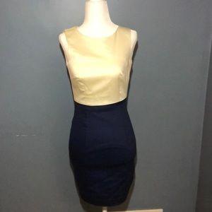 H&M cream and navy dress
